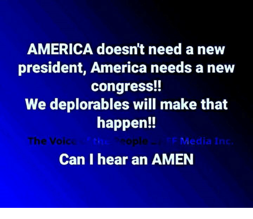 Deplorables: AMERICA doesn't need a new  president, America needs a new  congress!!  We deplorables will make that  happen!!  The Voic  ti  sople  Media Inc.  Can I hear an AMEN