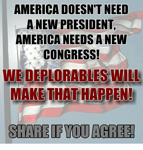 Deplorables: AMERICA DOESN'T NEED  A NEW PRESIDENT  AMERICANEEDS A NEW  CONGRESS!  WE DEPLORABLES WILL  MAKETHAT HAPPEN!  SHARE IF YOU AGREE