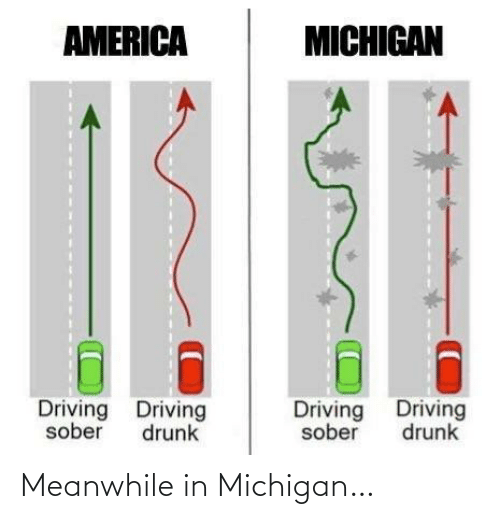 Drunk: AMERICA  MICHIGAN  Driving Driving  Driving Driving  sober  drunk  sober  drunk Meanwhile in Michigan…