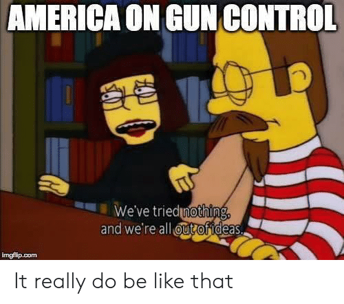gun control: AMERICA ON GUN CONTROL  We've triednothing,  and we're all ut ofideas.  imgflip.com It really do be like that