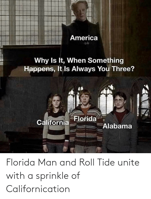Sprinkle: America  Why Is It, When Something  Happens, It Is Always You Three?  Florida  California  Alabama Florida Man and Roll Tide unite with a sprinkle of Californication