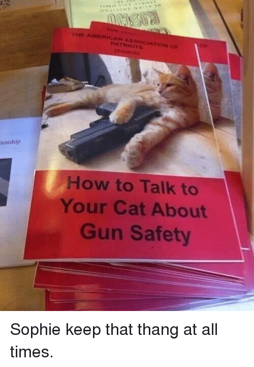 Patriotic, American, and How To: AMERICAN ASSOCIATİOH  PATRIOTS  ionship  How to Talk to  Your Cat About  Gun Safety Sophie keep that thang at all times.