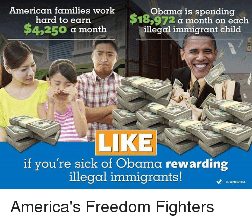 America Freedom: American families work  Obama is spending  hard to earn  183972 a month on each  $4,250  a month  illegal immigrant child  LIKE  if you're sick of Obama rewarding  illegal immigrants!  FORAMERICA America's Freedom Fighters