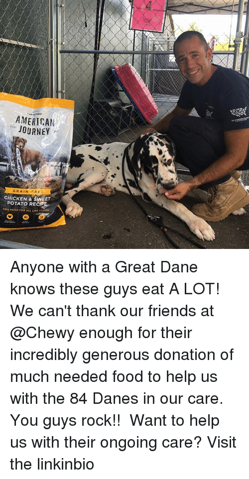 great dane: AMERICAN  JOURNEY  GRAIN EREE  CHICKEN & SWEET  POTATO RECIP  0OG FOOD FOR ALL LIFE STAGS  34 Anyone with a Great Dane knows these guys eat A LOT! We can't thank our friends at @Chewy enough for their incredibly generous donation of much needed food to help us with the 84 Danes in our care. You guys rock!!⠀⠀ ⠀⠀ Want to help us with their ongoing care? Visit the linkinbio
