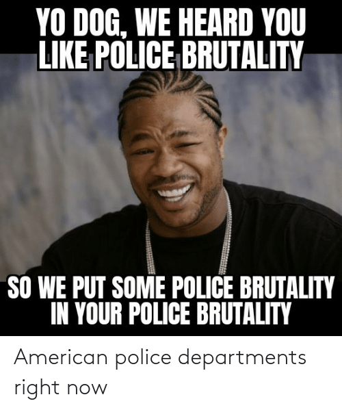 Police: American police departments right now