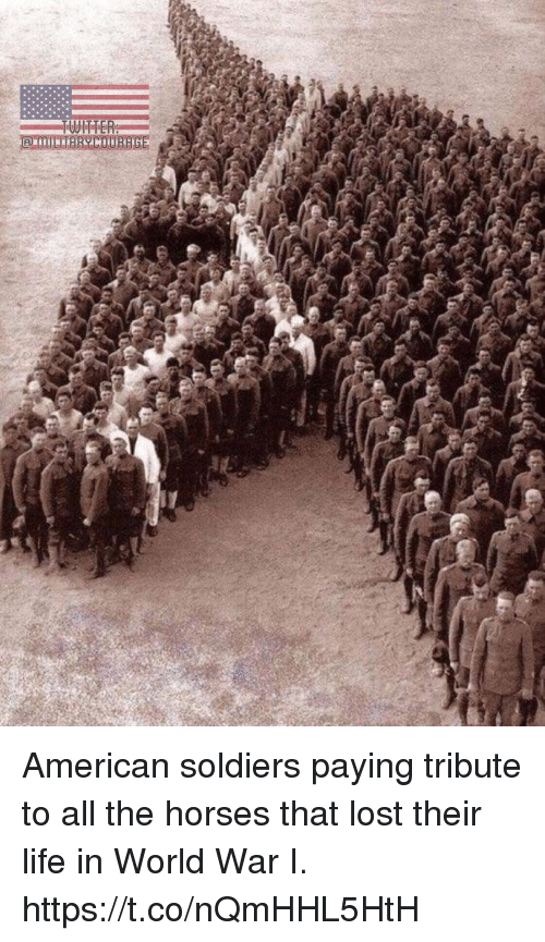 Horses, Life, and Memes: American soldiers paying tribute to all the horses that lost their life in World War I. https://t.co/nQmHHL5HtH