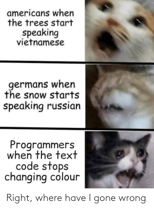 Changing: americans when  the trees start  speaking  vietnamese  germans when  the snow starts  speaking russian  Programmers  when the text  code stops  changing colour Right, where have I gone wrong