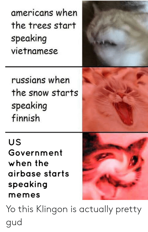russians: americans when  the trees start  speaking  vietnamese  russians when  the snow starts  speaking  finnish  US  Government  when the  airbase starts  speaking  memes Yo this Klingon is actually pretty gud