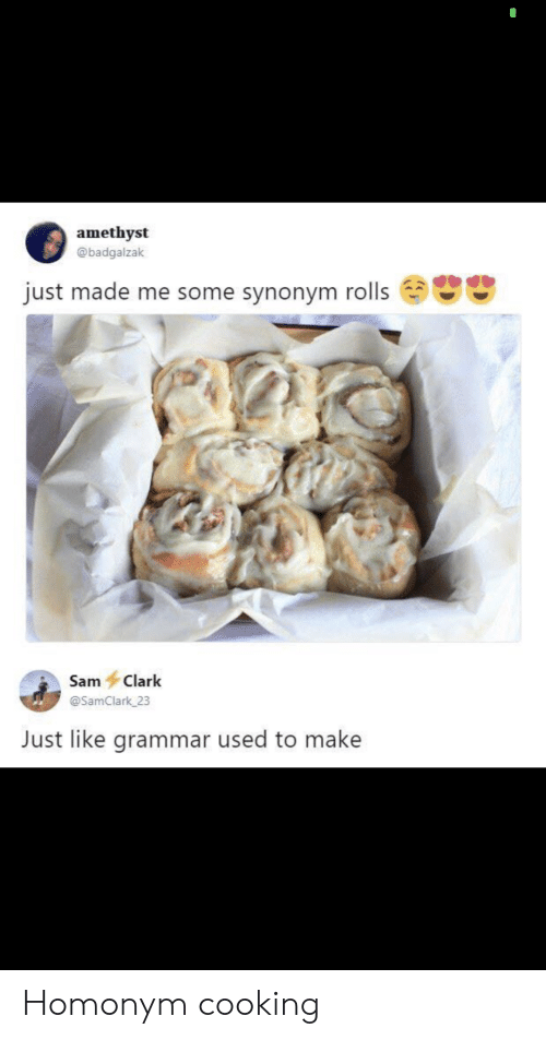 Amethyst: amethyst  @badgalzak  just made me some synonym rolls  Sam Clark  @SamClark 23  Just like grammar used to make Homonym cooking