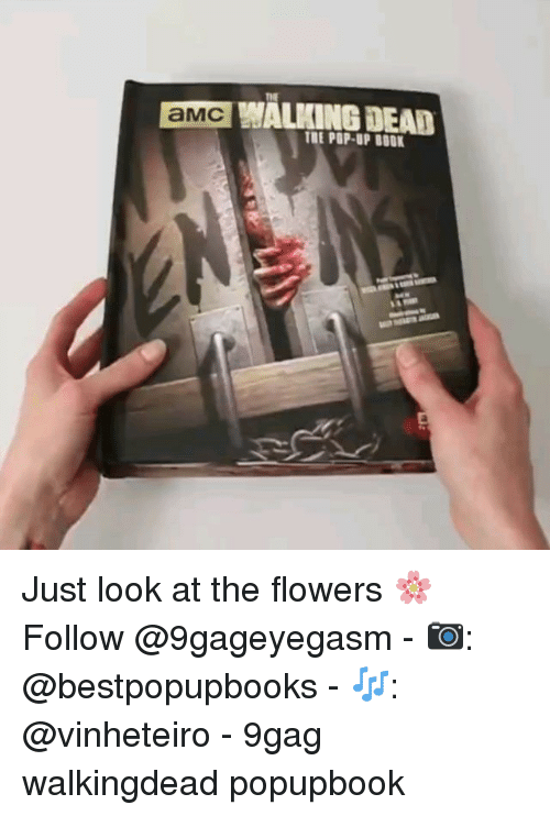 9gag, Memes, and Pop: aMGALING DEA  THE POP-UP BOOK Just look at the flowers 🌸 Follow @9gageyegasm - 📷: @bestpopupbooks - 🎶: @vinheteiro - 9gag walkingdead popupbook