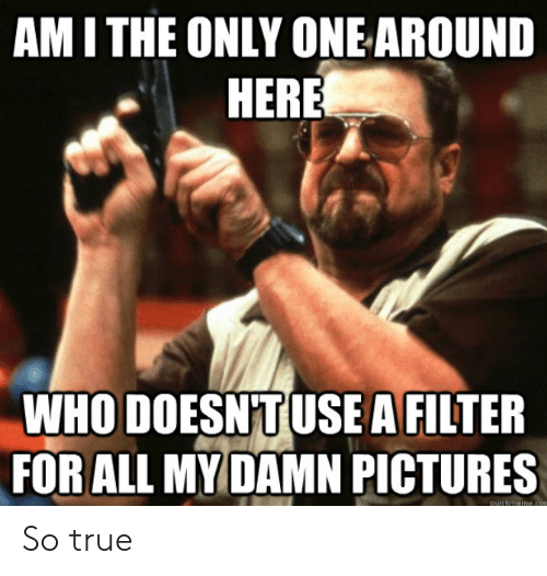 ami: AMI THE ONLY ONEAROUND  HERE  WHO DOESNTUSEA FILTER  FOR ALL MYDAMN PICTURES  quickmeme.con So true