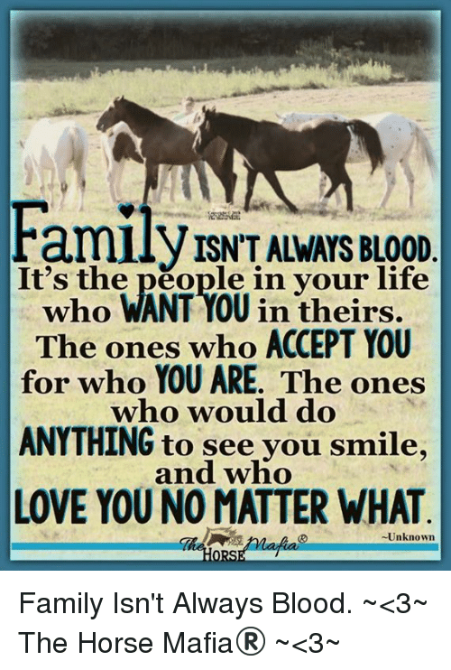 Family Isnt Always Blood: amilyISN'T ALWAYS BLOOD  It's the people in your life  who WANT YOU in theirs.  The ones who ACCEPT YOU  for who YOU ARE. The ones  who would do  ANYTHING to see vou smile,  and who  LOVE YOU NO MATTER WHAT  -Unknown Family Isn't Always Blood. ~<3~ The Horse Mafia® ~<3~
