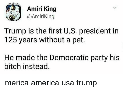 America, Bitch, and Memes: Amiri King  @AmiriKing  Trump is the first U.S. president in  125 years without a pet.  He made the Democratic party his  bitch instead merica america usa trump