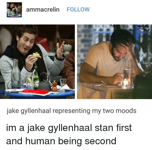 gyllenhaal: ammacrelin FOLLOW  jake gyllenhaal representing my two moods im a jake gyllenhaal stan first and human being second