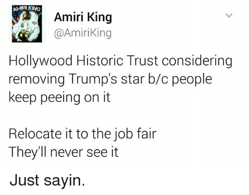 Memes, Historical, and Amiri King: AMU KING  Amiri King  @Amiri King  Hollywood Historic Trust considering  removing Trump's star b/c people  keep peeing on it  Relocate it to the job fair  They'll never see it Just sayin.
