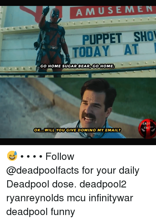 domino: AMUSEMEN  PUPPET SHO  TODAY AT  GO HOME SUGAR BEAR GO HOME.  DEAD  OK...WILL YOU GIVE DOMINO MY EMAIL?  FACT 😅 • • • • Follow @deadpoolfacts for your daily Deadpool dose. deadpool2 ryanreynolds mcu infinitywar deadpool funny