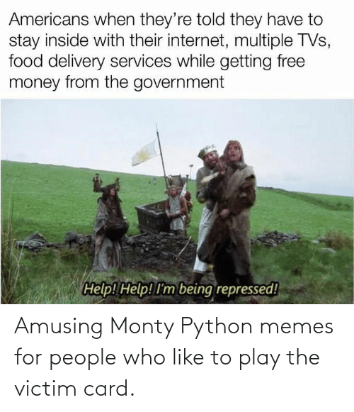 Memes, Python, and Monty Python: Amusing Monty Python memes for people who like to play the victim card.