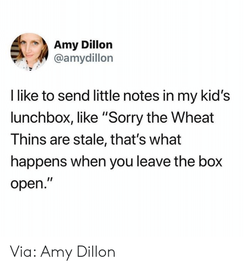 """the box: Amy Dillon  @amydillon  I like to send little notes in my kid's  lunchbox, like """"Sorry the Wheat  Thins are stale, that's what  happens when you leave the box  open."""" Via: Amy Dillon"""