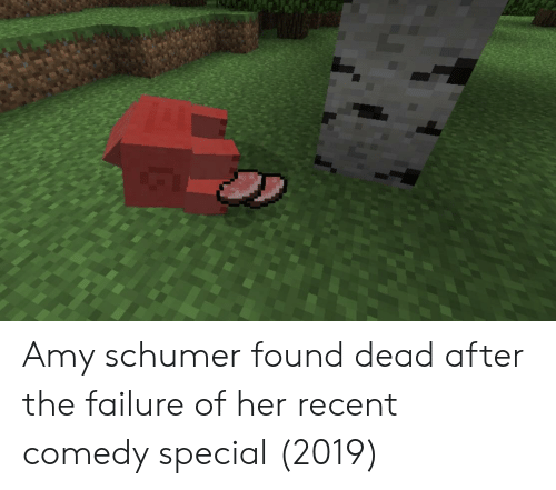 Amy Schumer: Amy schumer found dead after the failure of her recent comedy special (2019)