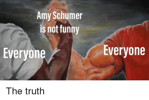 Amy Schumer: Amy Schumer  is not funny  Everyone  Everyone The truth