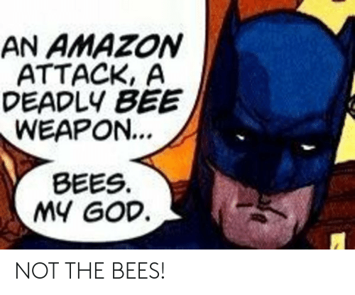Deadly: AN AMAZON  ATTACK, A  DEADLY BEE  WEAPON...  BEES  MY GOD NOT THE BEES!