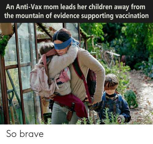 the mountain: An Anti-Vax mom leads her children away from  the mountain of evidence supporting vaccination  titanmaximum2 So brave