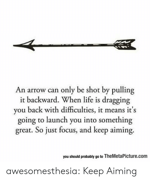Arrow: An arrow can only be shot by pulling  it backward. When life is dragging  you back with difficulties, it means it's  going to launch you into something  great. So just focus, and keep aiming.  you should probably go to TheMetaPicture.com awesomesthesia:  Keep Aiming