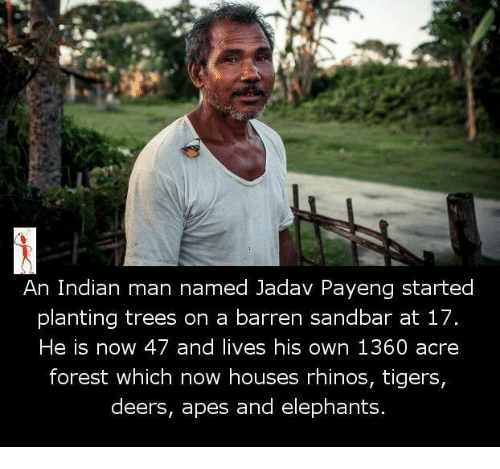 barren: An Indian man named Jadav Payeng started  planting trees on a barren sandbar at 17.  He is now 47 and lives his own 1360 acre  forest which now houses rhinos, tigers  deers, apes and elephants