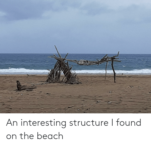 the beach: An interesting structure I found on the beach