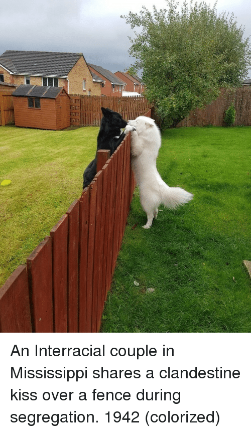 Interracial: An Interracial couple in Mississippi shares a clandestine kiss over a fence during segregation. 1942 (colorized)