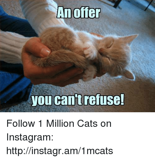 Memes, 🤖, and Refused: An offer  you can't refuse! Follow 1 Million Cats on Instagram: http://instagr.am/1mcats