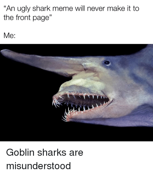 "shark meme: ""An ugly shark meme will never make it to  the front page""  Me:"