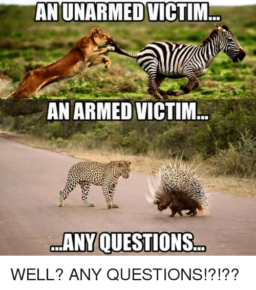 Funny Any Questions Meme : An unarmed victim armedvictim any questions well