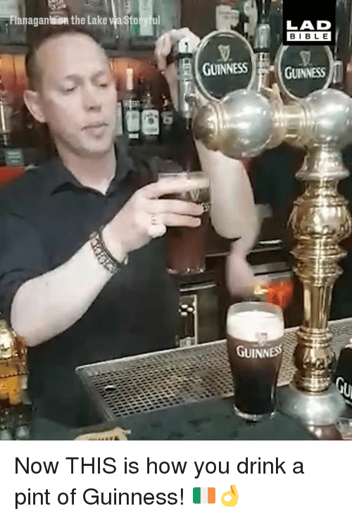 guinness: anaganlsion the Lake  ul  LAD  BIBL E  GUINNESS GUINNESS  8  GUINNESS Now THIS is how you drink a pint of Guinness! 🇮🇪👌