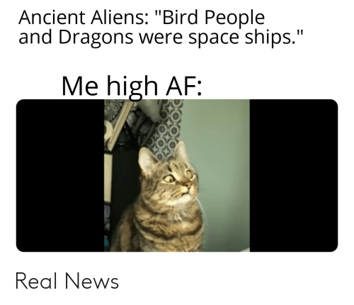 """Ancient Aliens: Ancient Aliens: """"Bird People  and Dragons were space ships.""""  Me high AF: Real News"""