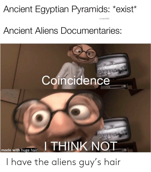 """Aliens Guy: Ancient Egyptian Pyramids: *exist""""  u/Trelix9001  Ancient Aliens Documentaries:  Coincidence  I THINK NOT  made with huge hair I have the aliens guy's hair"""