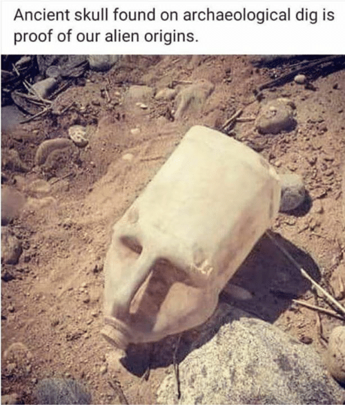 Dank, Alien, and Skull: Ancient skull found on archaeological dig is  proof of our alien origins