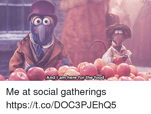Food, Girl Memes, and For: And 0am here for the  And I am here for the food Me at social gatherings https://t.co/DOC3PJEhQ5