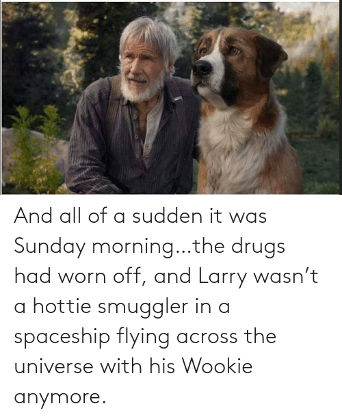 Larry: And all of a sudden it was Sunday morning…the drugs had worn off, and Larry wasn't a hottie smuggler in a spaceship flying across the universe with his Wookie anymore.