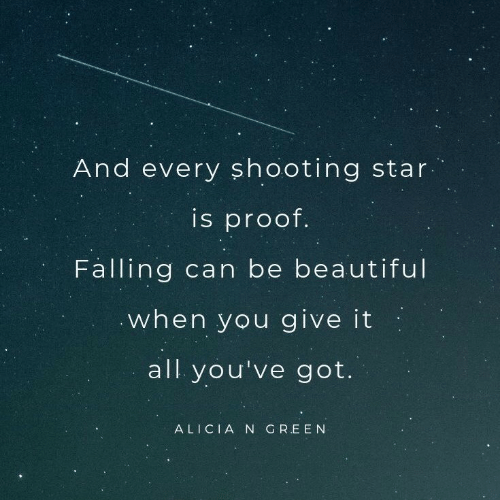 Youve Got: And every sh ooting star  is proof.  Falling can be beautiful  when you give it  all you've got.  ALICIA N GREEN