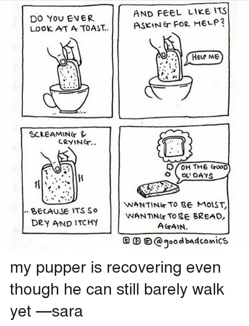 Moistness: AND FEEL LIKE ITS  DO YOU EVER  HELP?  Look AT A TOAST.. ASKING FOR HELP ME  SCREAMING  CRYING  H THE GooD  OL DAYS  VNANTING TO BE MOIST  BECAUSE ITS So  WANTING TO BE BREAD  DRY AND ITCHY  AGAIN.  CO a good badcomics my pupper is recovering even though he can still barely walk yet —sara