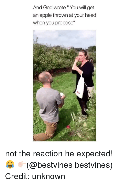 """Apple, God, and Head: And God wrote """" You will get  an apple thrown at your head  when you propose""""  I1 not the reaction he expected! 😂 👉🏻(@bestvines bestvines) Credit: unknown"""