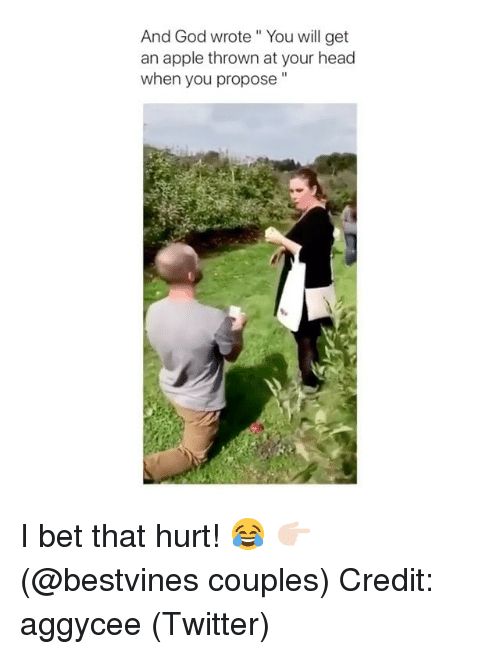 """Apple, God, and Head: And God wrote"""" You will get  an apple thrown at your head  when you propose"""" I bet that hurt! 😂 👉🏻(@bestvines couples) Credit: aggycee (Twitter)"""