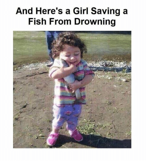 25 best memes about funny funny memes for Saving fish from drowning