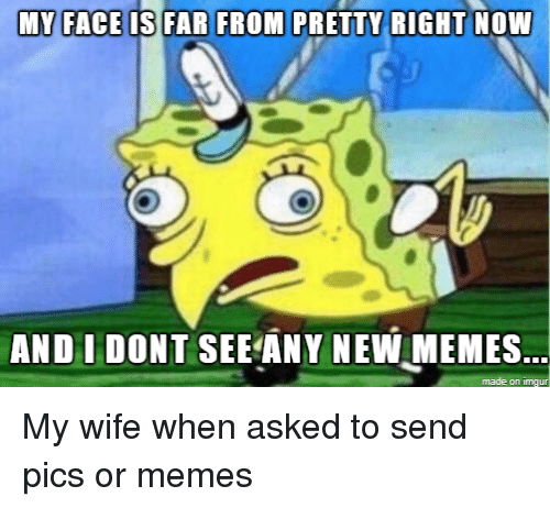 new memes: AND I DONT SEE ANY NEW MEMES  made on imgu My wife when asked to send pics or memes