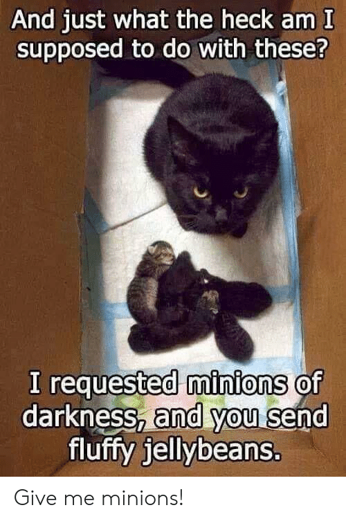 fluffy: And just what the heck am I  supposed to do with these?  I requested minions of  darkness, and you send  fluffy jellybeans. Give me minions!