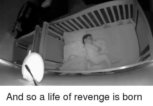 Funny, Life, and Revenge: And so a life of revenge is born