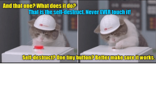 Never Ever: And that one? What does it do?  That is the self-destruct. Never EVER touch it!  Self-destruct? One tiny button? Better make sure it works.