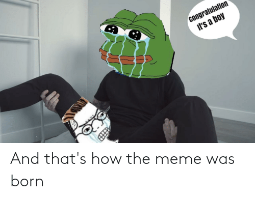 Was Born: And that's how the meme was born