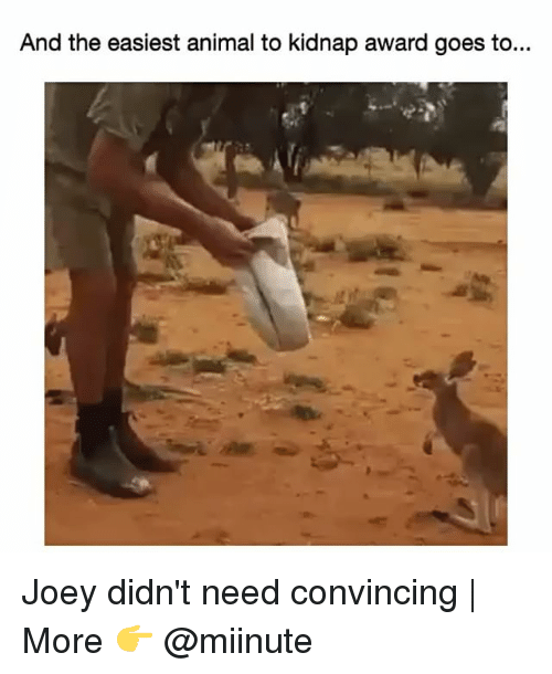 Funny: And the easiest animal to kidnap award goes to... Joey didn't need convincing | More 👉 @miinute